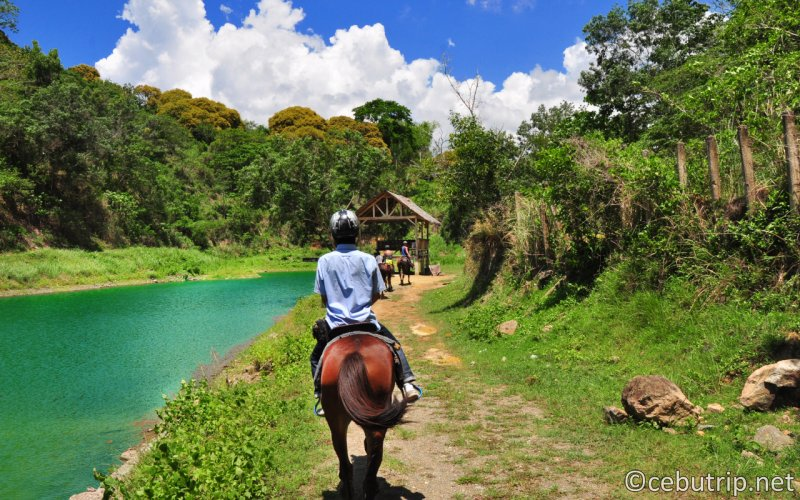 Run through the wilderness! Horseback riding experience in the mountains of Cebu!