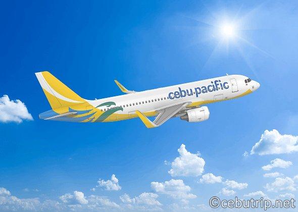 セブパシフィック航空がさらに便利に!!格安チケットをゲットする方法とは?