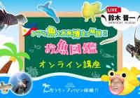 セブ島オンラインツアー|お魚博士によるお魚図鑑オンライン講座