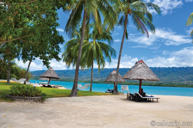 A cute island abundant with nature is a small resort Badian Island Wellness Resort