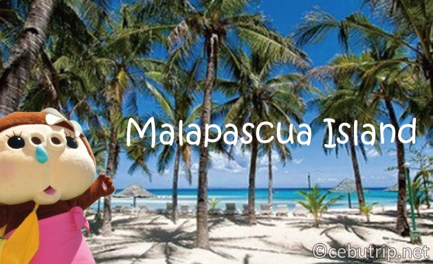 Things that attracts international divers in Malapascua island?