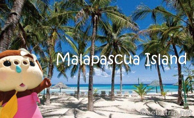 世界中のダイバーを魅了する「マラパスクア島の魅力」とは?