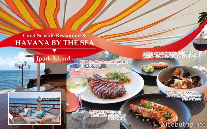 海の見えるリゾートレストラン!おすすめ4選!!Jパーク HABANA