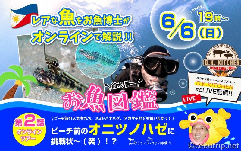 セブ島オンラインツアー2 レアな魚をお魚博士がオンラインで解説!