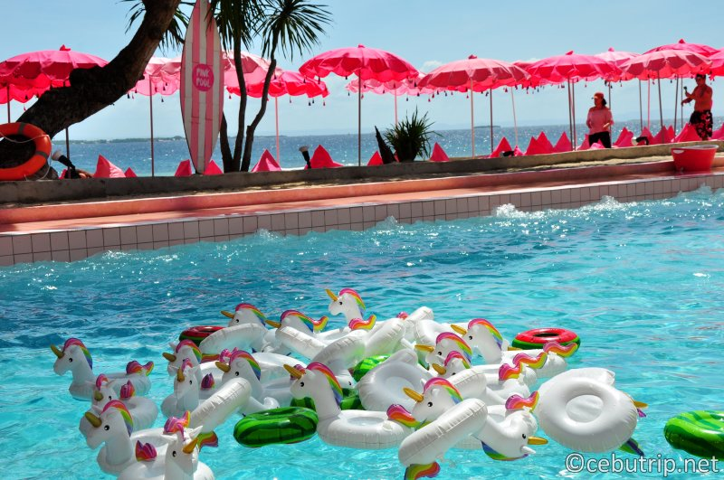 世界中のインスタグラマーが注目するセブ島の新しいフォトスポット「ハッピービーチ」アイランド!!