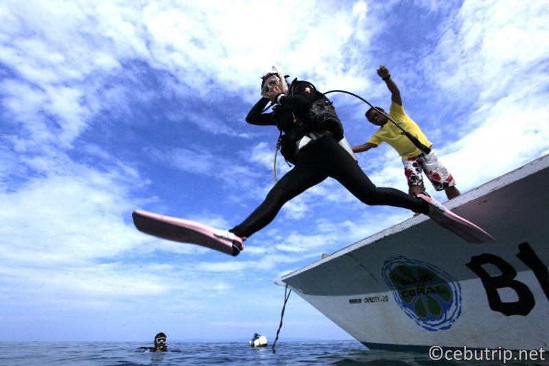 殿様ダイブでセブのダイビングを満喫!!PADI5つ星ダイビングショップ「ブルーコーラル」