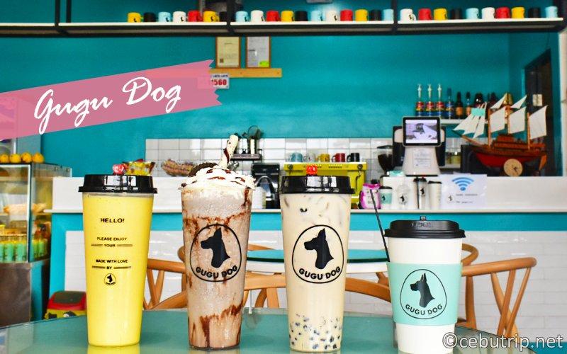 "Must-see dog lovers! Dog cafe ""GUGU DOG"""