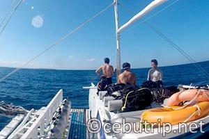 PUAHELE(プアヘレ)で行く!セブの人気の島を巡るアイランドホッピング+体験ダイビング
