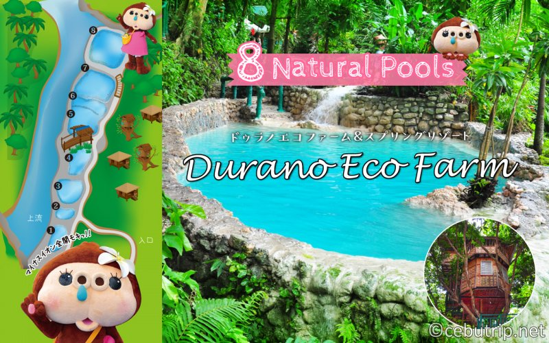 Spending a day in Durano Eco Farm and Spring Resort