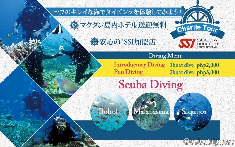 マクタン島でもっとダイビングを楽しもう!