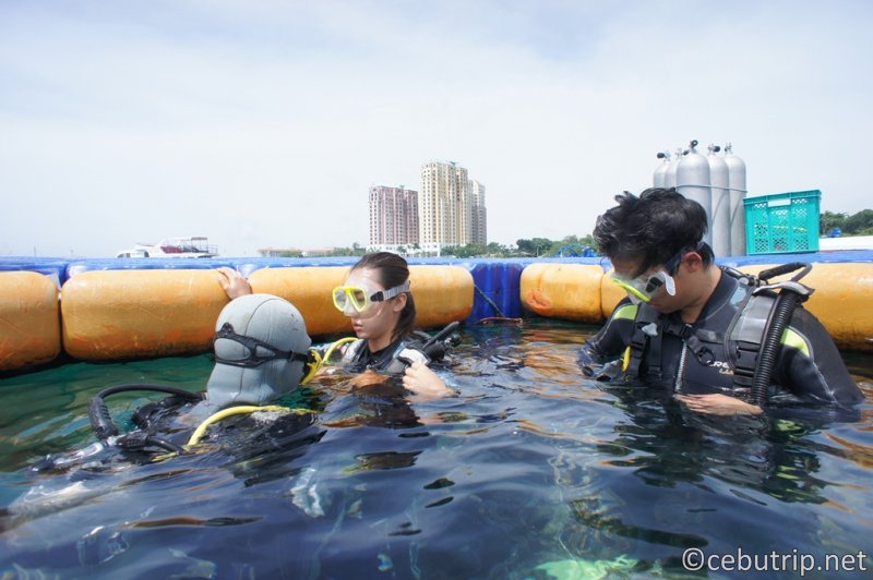 The CNC Scuba Diving Academy provides a great opportunity to obtain an affordable diving license.