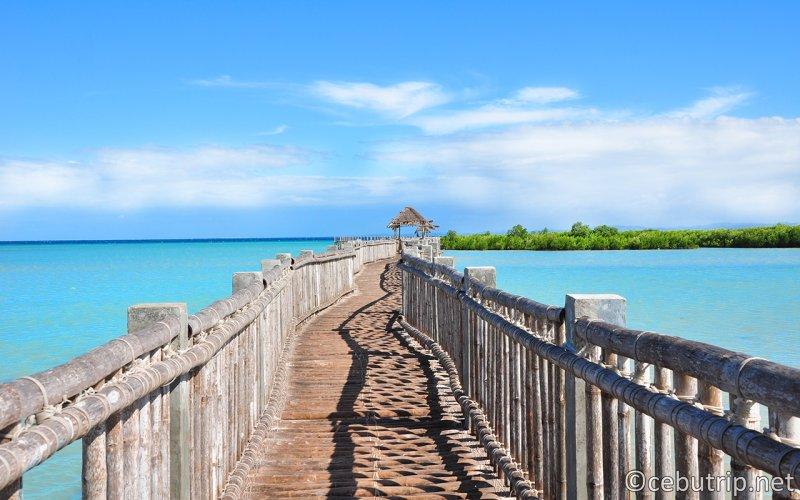 【2018年版】セブ島から日帰りで行ける人気の離島7選 オランゴ島