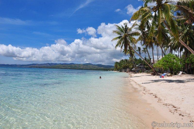 欧米人の観光客や移住者が急増中の魔女が住む島「シキホール」の魅力