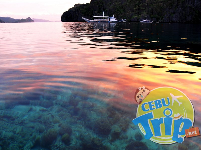 エルニドのミニロックアイランド(Miniloc Island)海