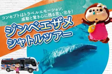 ジンベエザメに会いに行こう!業界最安値!!海も滝も楽しめる「ジンベエザメツアー」! #0