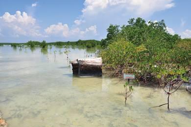 日帰りで行ける!絶対に訪れたい人気の島!! 5つの離島を巡る「満喫アイランドホッピング」 #14