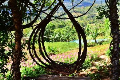 Sirao Pictorial Garden #