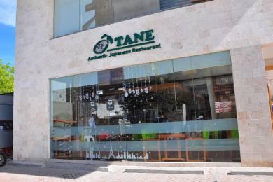 種~TANE~ #