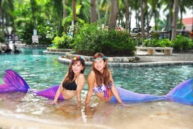 Aquamarine Ocean tours #