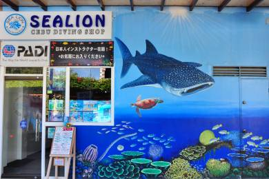 SEA LION #