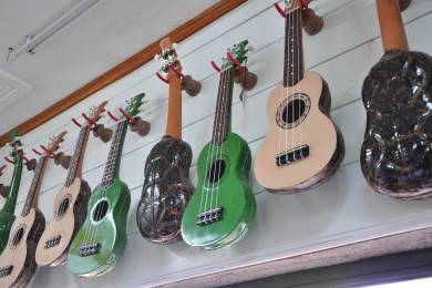 Alegre Guitars Factory #1