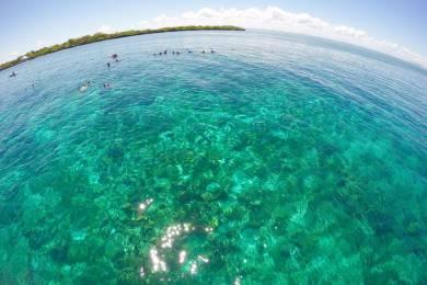 Dream Of Cebu #4