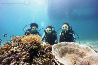 Fun Diving after Acquiring the license is for free in one month!